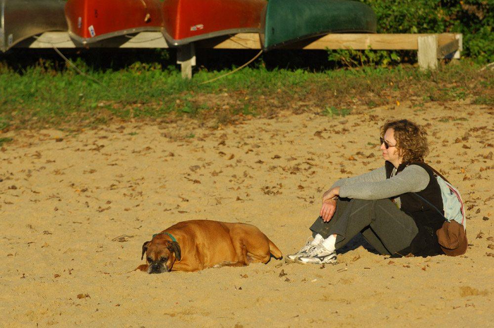 Dog Sunning
