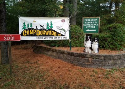 COVER CLASSICS camp dogwood banner