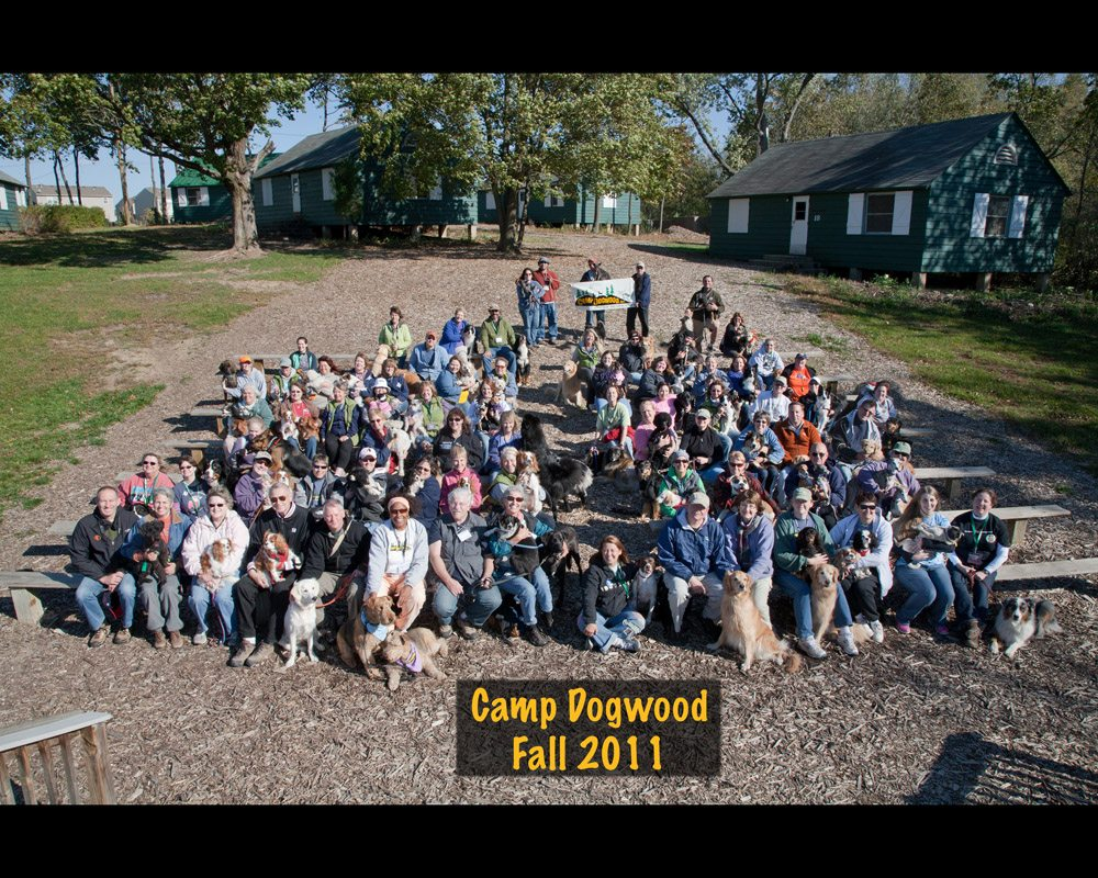 Group_Fall_2011